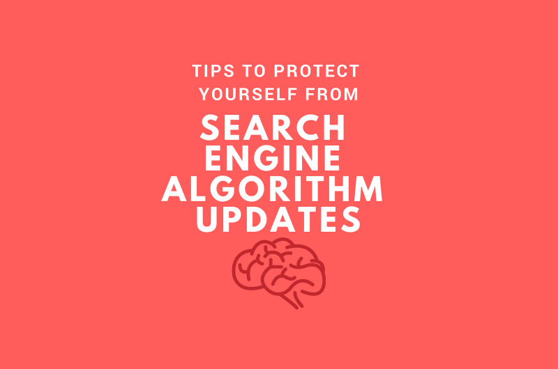 Protect yourself from Algorithm Updates